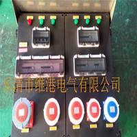 防爆防腐动力检修配电箱黑色电源检修箱操作箱(可根据客户要定做报价)