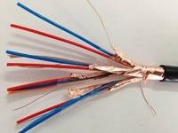 仪表信号电缆DJVVP