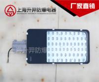 厂家直销 防水防尘防腐LED灯 防爆泛光灯 大功率防爆LED灯