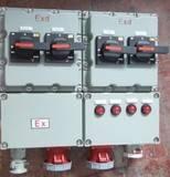 BXX51防爆动力检修箱