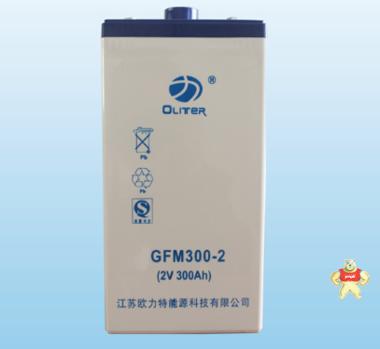 欧力特2V300AH 风力系统光伏电站储能电源 免维护胶体路灯蓄电池GFM300-2