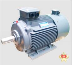 YVF2-80M1-4-0.55KW