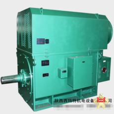 YRKK8008-16-800KW-10KV-IP54