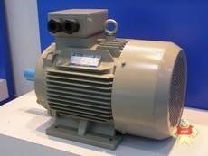 YE3-80M1-2