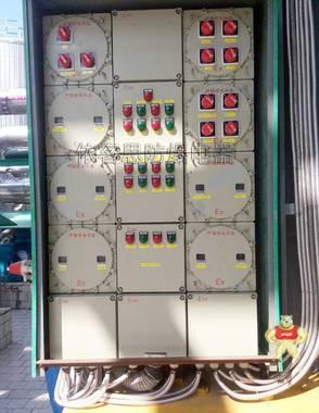 CBP51防爆动力配电箱施耐德元件防爆箱定做