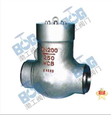 厂家直销H64Y高温高压止回阀质量优质低价批发