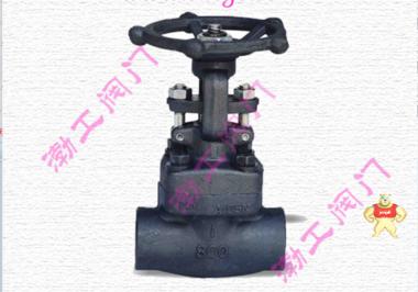 厂家专业生产Z61H锻钢闸阀质量优质低价批发精品