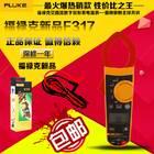 福禄克FLUKE F317钳型电流表//价格 厂家 参数 原理 说明书