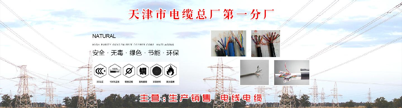 天津电缆总厂一厂