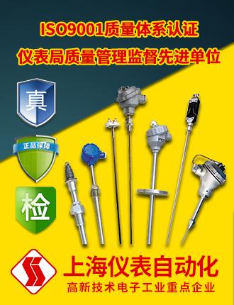 上海仪表自动化
