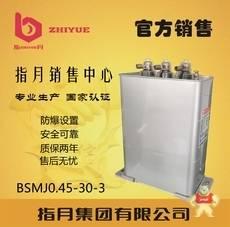 BSMJ0.45-30-3