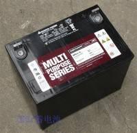 大力神蓄电池12V9AH西恩迪蓄电池C-D12-9LBT铅酸太阳能UPS/EPS