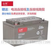 山特蓄电池 C12-65AH 12V65AH 铅酸免维护蓄电池