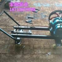 河南LC-50/0.6型罗茨泵/驻马店粮油泵报价