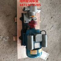 南宁食品泵/食品级齿轮泵/南宁KCB-55型不锈钢齿轮油泵价格