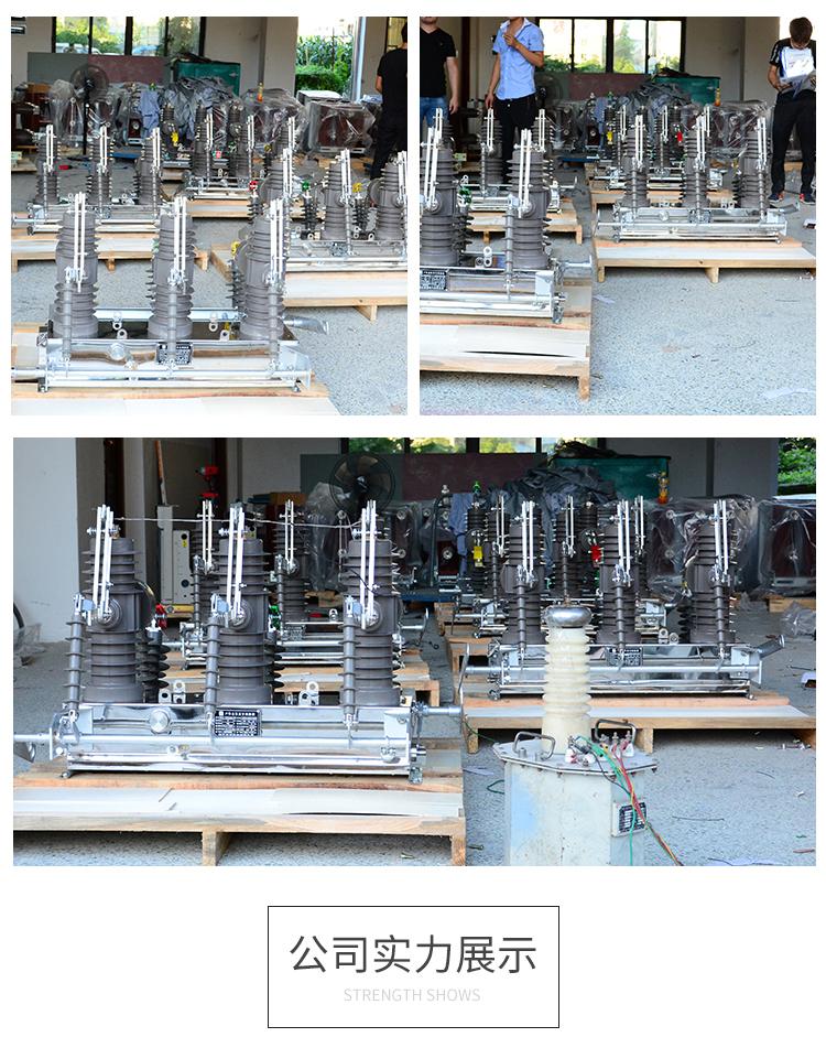 供应辉能电气ZW43-12GG双隔离户外高压真空断路器10KV双电源断路器 ZW43-12双电源,高压真空断路器,户外高压真空断路器,10KV高压断路器,高压双电源开关