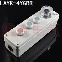 电厂、水泥厂专用防水防尘操作盒按钮控制盒机旁按钮盒LAYK-4YGBR