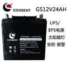 光盛蓄电池GS12V24AH型号价格/CONSENT蓄电池12V24AH价格