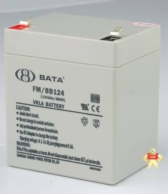 FM/BB124T(12V4AH)原装正品