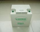 松树蓄电池SB12V50授权代理商