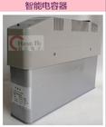 智能电容器直销 CRC-CF-250/15-1低压电容补偿柜专用分补智能电容