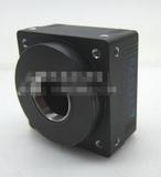 工业相机 BASLER A202K