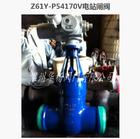 Z961Y电站闸阀