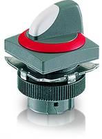 代理RAFI纳安斐 选择开关 开孔22mm RAFIX 22QR系列 1.30.074.501/0304 议价为准