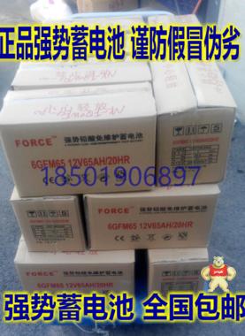 FORCE强势蓄电池12V120AH 6GFM120特价包邮 强势蓄电池厂家直销