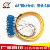奇恒通信12芯SC束状尾纤,电信级1.5米SC束状尾纤