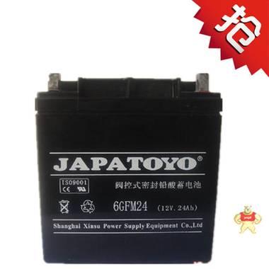 东洋蓄电池6GFM24 12V24AH蓄电池/直流屏太阳能专用电池/质量保证