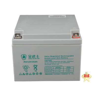 金武士UPS蓄电池 12V24AH PH12V24AH 电源电池 铅酸电池UPS蓄电池