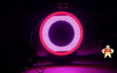 [二手]进口蓝、红双色LED多角度环形组合光源 DC24/12V