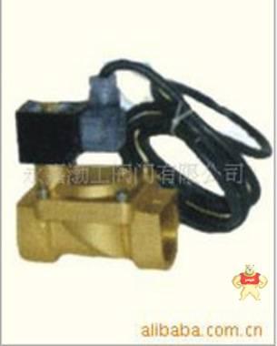 厂家专业生产ZHS水下液用电磁阀(图)质量优质低价