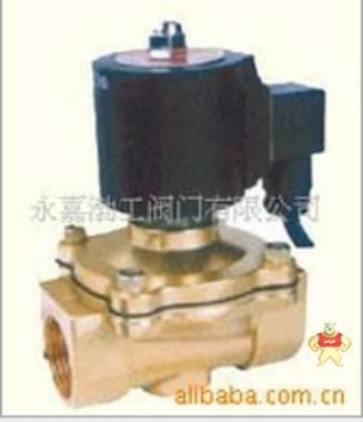 喷泉专用防水型电磁阀