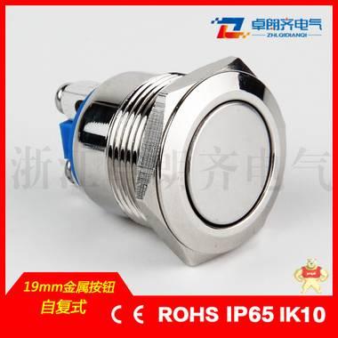 卓朗齐厂家直销19mm金属按钮开关平头 防水复位螺丝脚ZLQ高品质