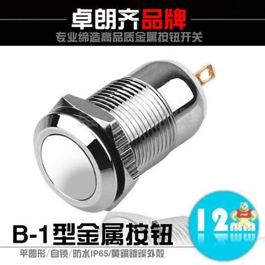 12mm金属按钮开关 无灯 平圆形 自锁 防水IP65 黄铜镀镍外壳ZLQ