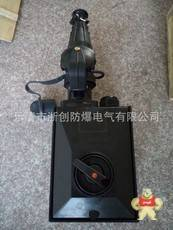 BCZ8050-32/AC380VExdIICT4