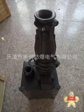 BCZ8050-32/AC220VExdIIBT4