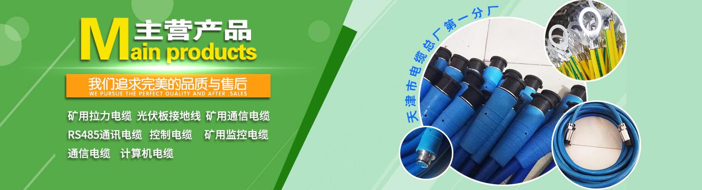 天津市电缆总厂(总部)